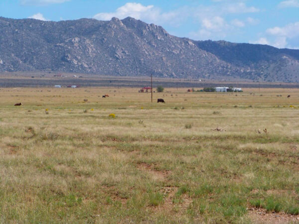 RARE 5 ACRE NEW MEXICO RANCH BUILD READY! NEAR POWER! DIRECT ROAD ACCESS!