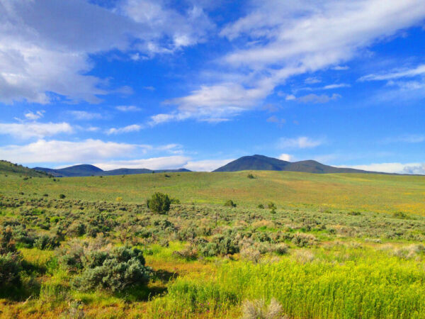 RARE 5 ACRE NEVADA RANCH! STARR VALLEY! EASY ACCESS! NEAR POWER! MOUNTAIN VIEWS!