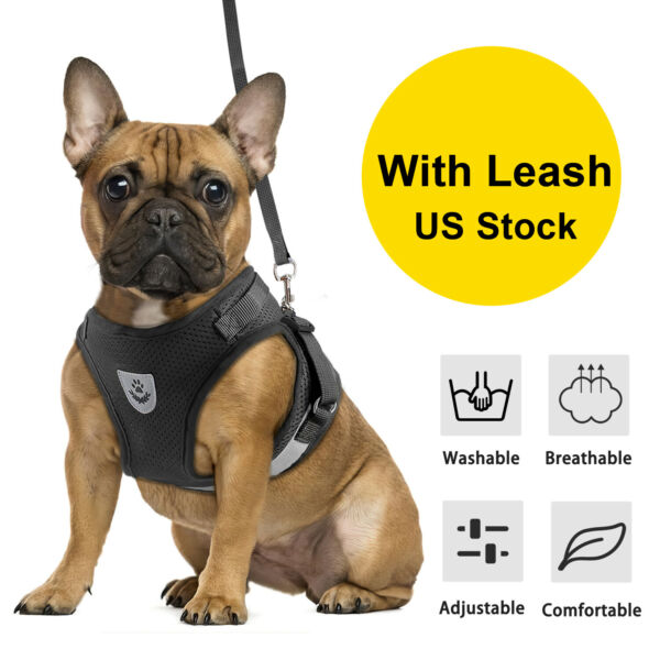 Small Dog Pet Breathable Mesh Harness Vest Collar Chest Strap Adjustable Leash $7.99