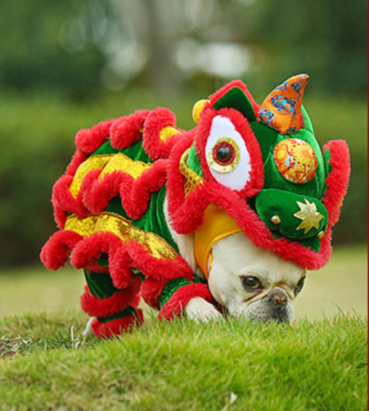 Chinese Lion Dance Dog and cat#x27;s clothes Funny lion costume Dogs Cats cosplay $24.43