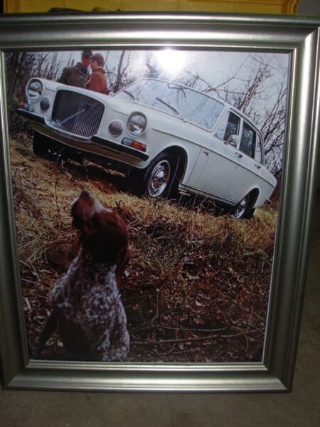 Volvo 164 and Dog picture in a frame $25.00