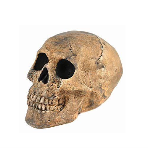 Myard Fireproof Imitated Human Fire Pit Skull Gas Log for NG LP Wood Fireplace