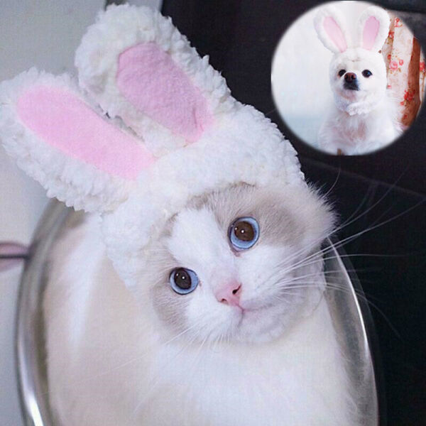Costumes Dogs Ears Hat Bunny Rabbit Cat Cosplay New Cap Pet Small For Cat $6.82