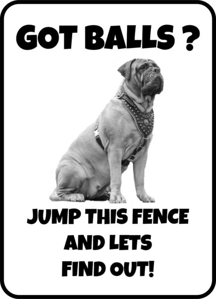 BULL MASTIFF GOT BALLS JUMP THIS FENCE AND FIND OUT GATE FENCE DOG WARNING SIGN $12.25