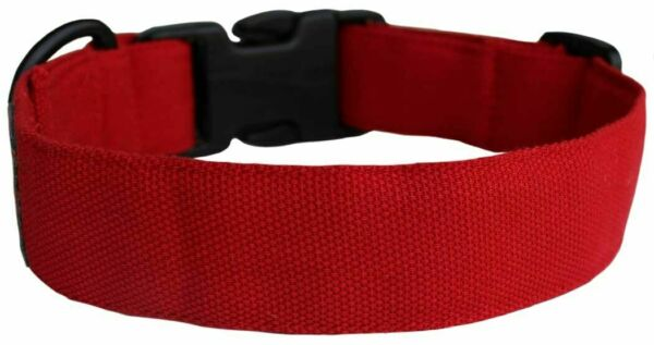 Lana Paws Solid Dog Collar Small Size Red $20.31