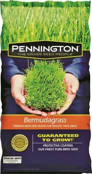 PENNINGTON 100524436 5LB BAG FRESH BERMUDA GRASS SEED DROUGHT RESISTANT 1331248
