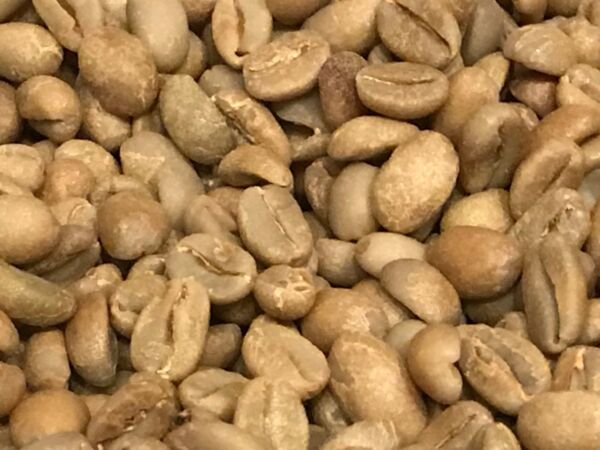 green coffee beans Ethiopia Limu Natural Process Organic10 pounds. NEW CROP!!!