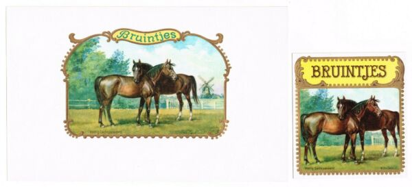 2 CIGAR BOX LABEL PAIR VINTAGE 1910 EMBOSSED BRUINTJES TWO HORSES GERMANY MARE