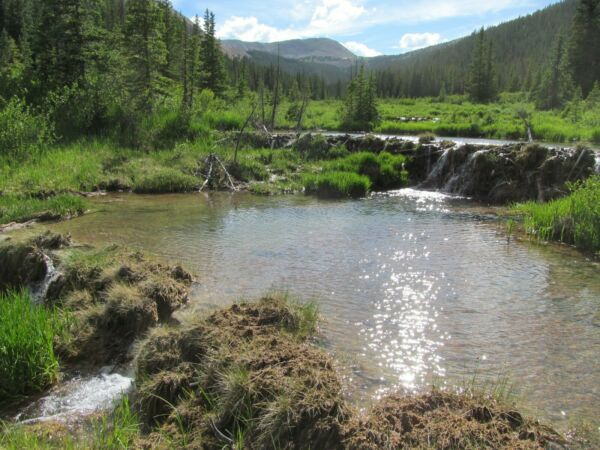 Colorado Placer Gold Mining Claim Quartz Creek CO Mine Panning Sluice High Bank