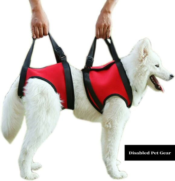 Rear amp; or Front Dog Support Lift Harness See Description USA Seller $41.99