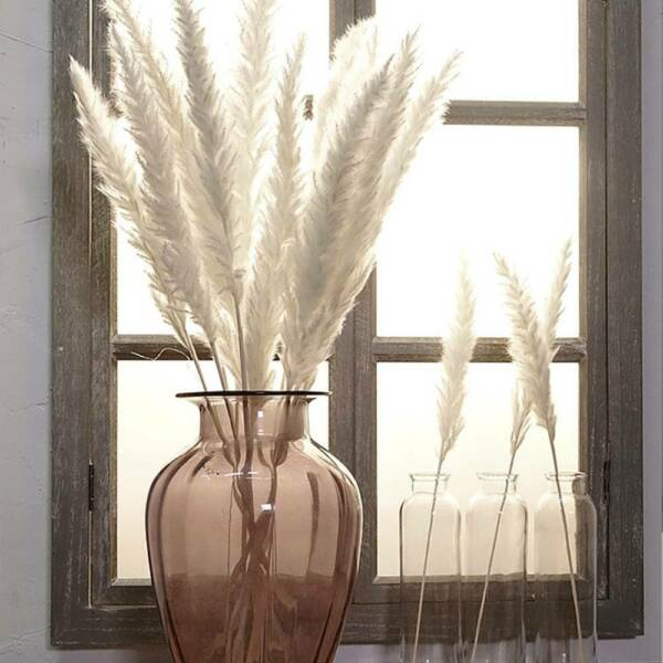 Bulrush Natural Flower Bunch Artificial Small Dried Pampas Grass Phragmites 7pc