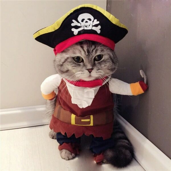 Funny Cat Costumes Pirate Suit Cat Clothes Kitten Corsair Party Clothes For Cats $12.49