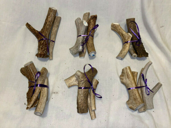 Antlers for Dog Bones Chew Toys $18.00