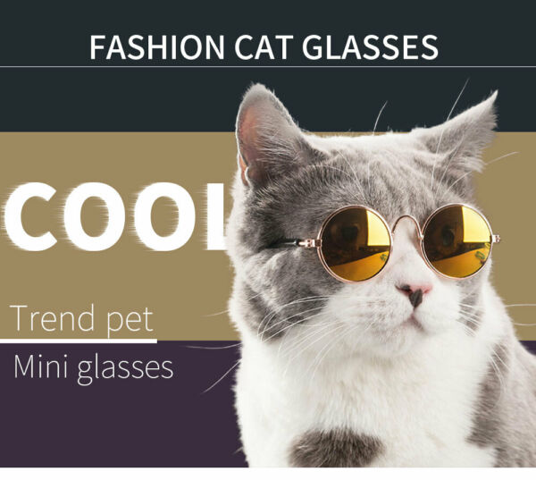 Cat Dog Sunglasses Pet Eye wear for Small Doggy Pet Products Pet supplies $9.99