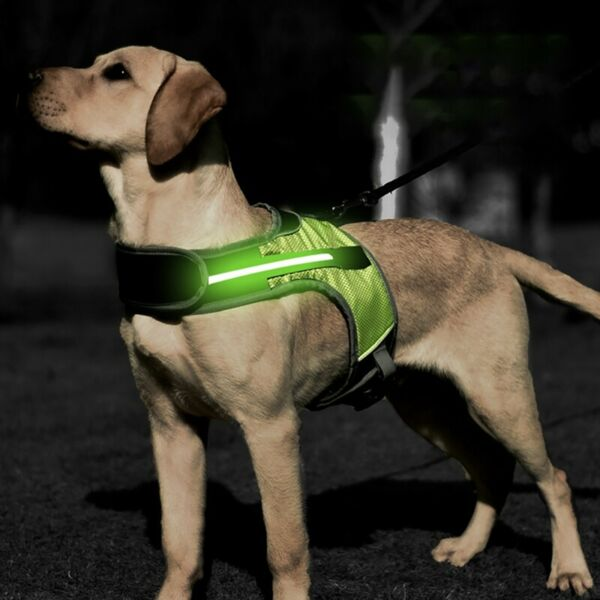 K Shaped Luminous LED Harness For Pet Dog Chest Harness For Dogs Night S M L XL $13.99