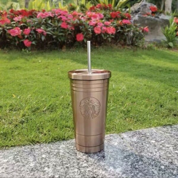 Starbucks Steel Cold Cup Tumbler With Straw amp; Lid 17 oz Silver