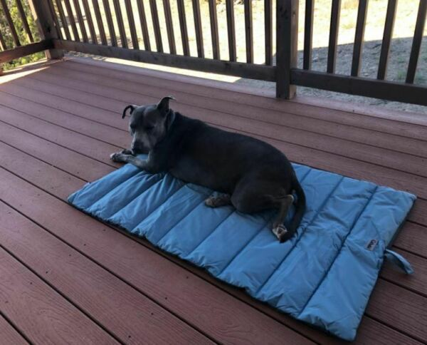 Pets Bed Outdoor For Dog Waterproof Washable Large Size 43x26 Inch Used $42.19