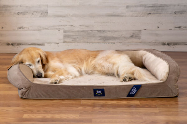 Serta XL Memory Foam Orthopedic Dog Bed Small Family Dog Couch Pet Brown $78.00