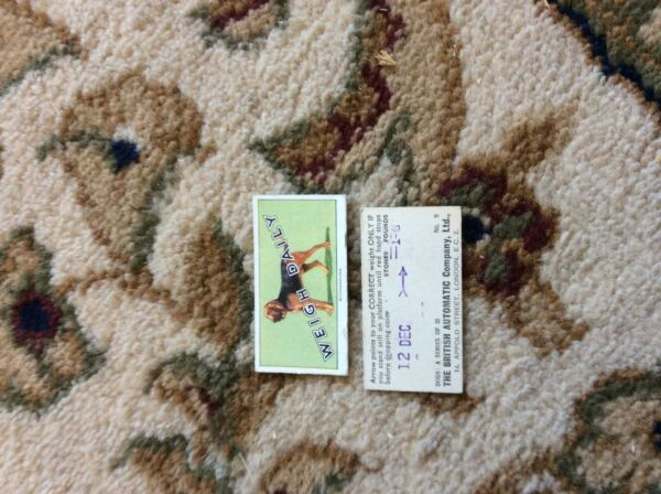 BRITISH AUTOMATIC DOGS 1ST SERIES WITH WEIGH DAILY # 05 bloodhound GBP 1.75