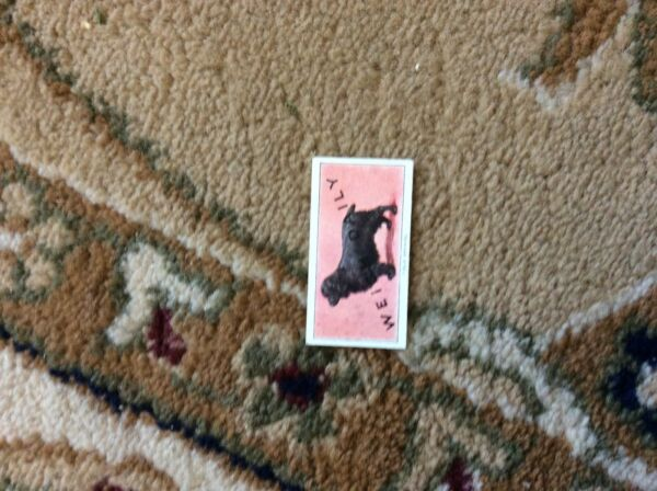 BRITISH AUTOMATIC DOGS 2nd SERIES WITH WEIGH DAILY no 14 field spaniel GBP 1.75