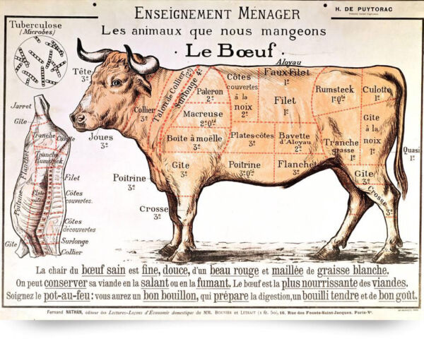 Vintage French Beef Meat Diagram Poster Painting 8x10 Real Canvas Art Print New $13.49