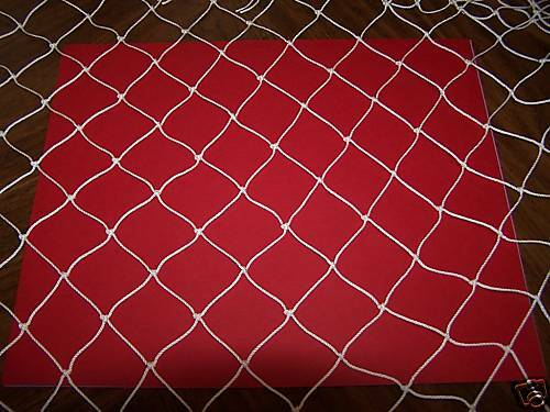 1000' X 10'   POULTRY AVIARY PROTECTIVE FRUIT TREES NYLON NETTING  1 12