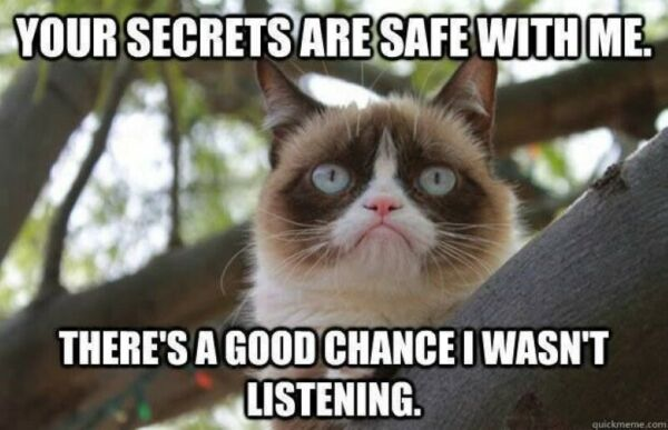 YOUR SECRETS ARE SAFE WITH ME I WASN#x27;T LISTENING silly Grumpy Cat lover magnet $3.31