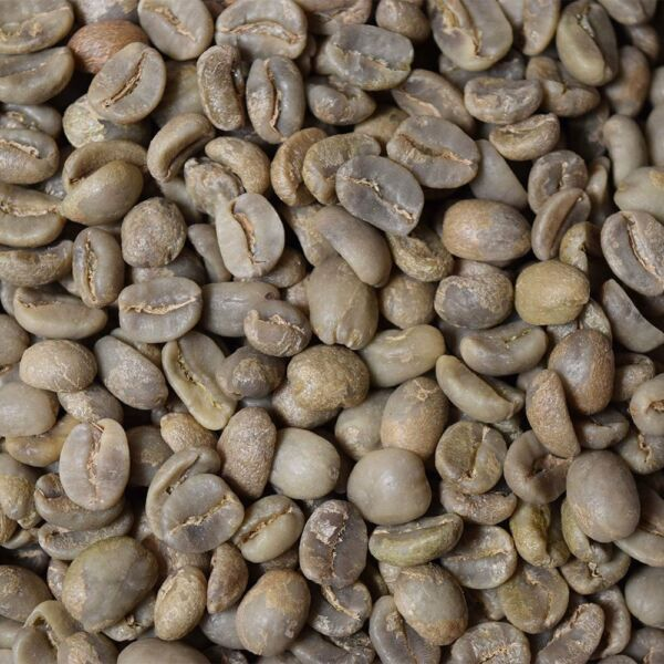 Honduran Marcala - Organic Fair Trade  - 5 Lbs. Unroasted Green Coffee Beans