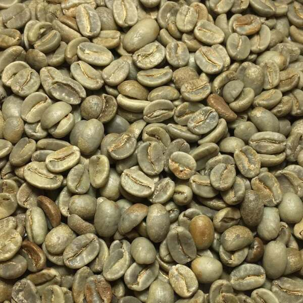 Papua New Guinea - 5 Lbs. Unroasted Green Coffee Beans