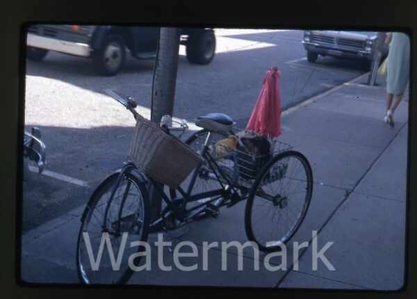 1968 kodachrome Photo slide dog on three wheel bicycle $9.99