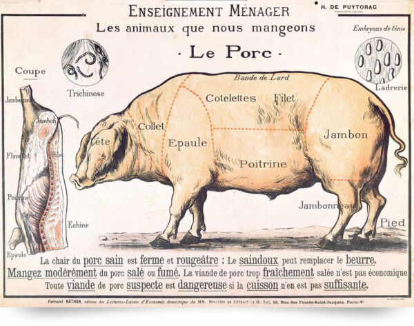 Vintage French Le Porc Meat Diagram Poster Painting 8x10 Real Canvas Art Print $13.49