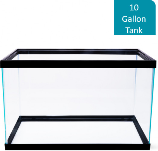 10 Gallon Fish Tank Aquarium Clear Glass Terrarium Pet Aqua Reptiles Goldfish $27.18