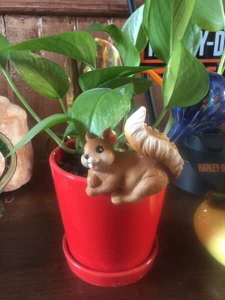 """SQUIRREL POT SITTER LARGER SIZE NEW WITH TAGS 3"""" LONG"""