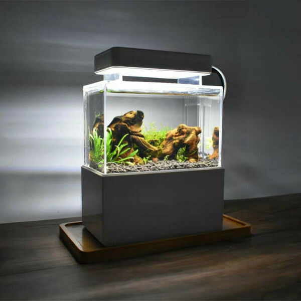 Mini Creative Desktop Aquarium Fish Tank With Water Filtration Air Pump Tank $53.01