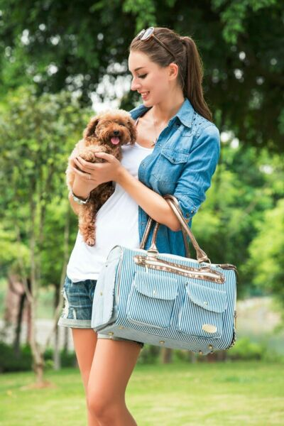 Blue Vertical Striped Fashion Pet Dogs Carrier Bag Fashion Small Puppy Dog Bag $49.99