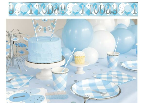 Blue Gingham 1st First Birthday Boys Party Supplies Tableware