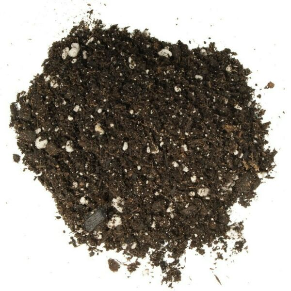10 Lbs of the Best Cannabis potting soil!! Free shipping too!!!!! $26.00