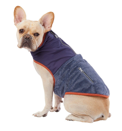 Top Paw Dog Two Tone Cozy Coat Blue Pink S XL Waterproof Warm Ultra Reflective $12.95