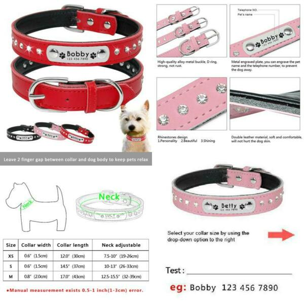 Customized Rhinestore Dog Collars Padded Personalized Dogs Id Collars For Small $8.99