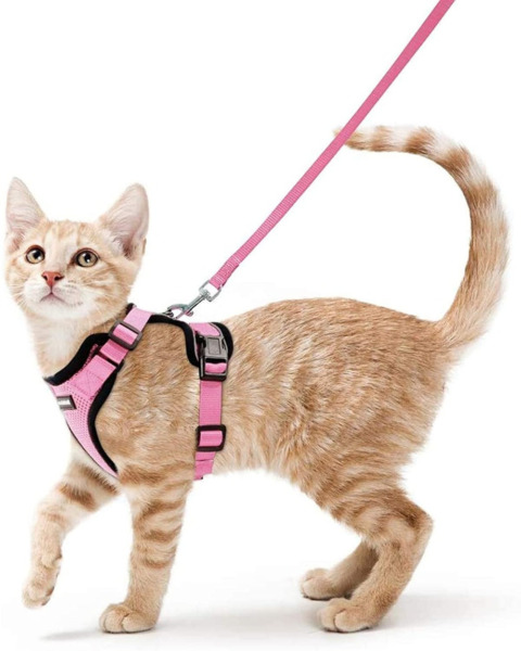 Cat Harness and Leash for Cat Walking Escape Proof Soft Adjustable Vest Green $13.99