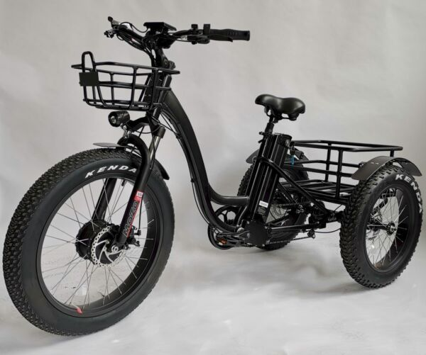 Fat tire electric tricycle trike moped scooter with big tires electric mobile $3999.00
