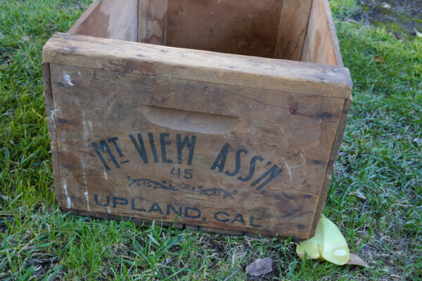 vintage wood crate mountain view fruit ass#x27;n Upland Calif