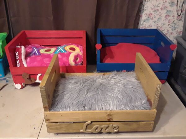 small dog beds $50.00