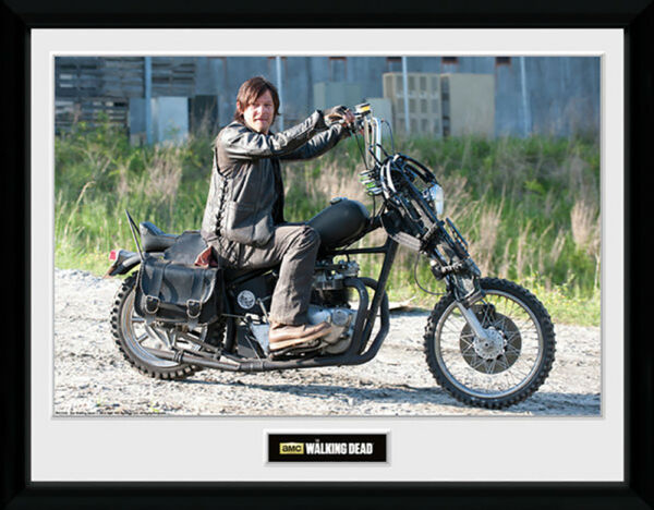 The Walking Dead Daryl Bike Mounted amp; Framed Print $40.00