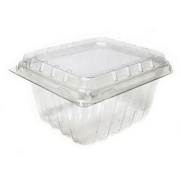 Plastic Berry  Produce 1 Pint Basket  Container by MT Products - 15 Pieces