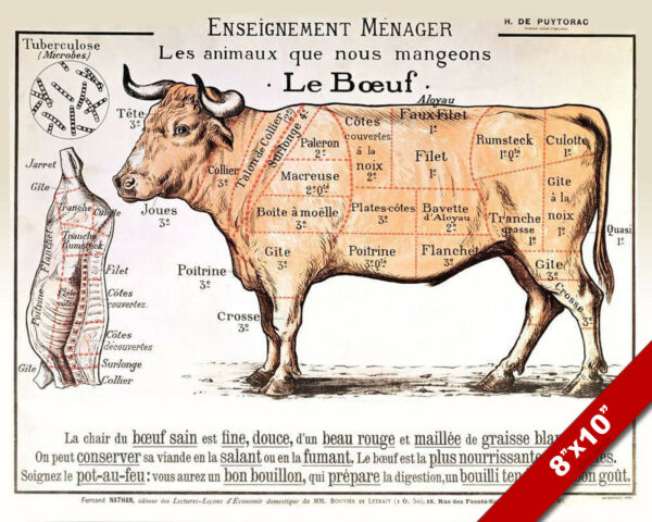 Vintage French Beef Meat Diagram Poster Painting 8x10 Real Canvas Art Print New $14.79