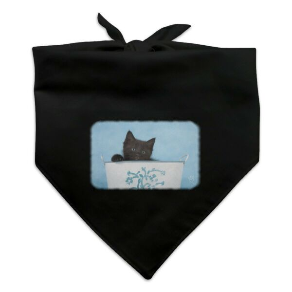 Black Kitten Cat in Bucket Tin Pail Dog Pet Bandana