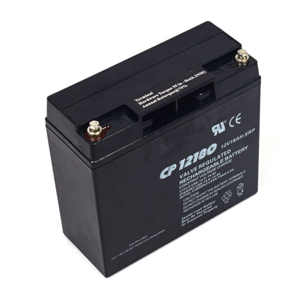 Briggs and Stratton 193463GS Battery $107.95
