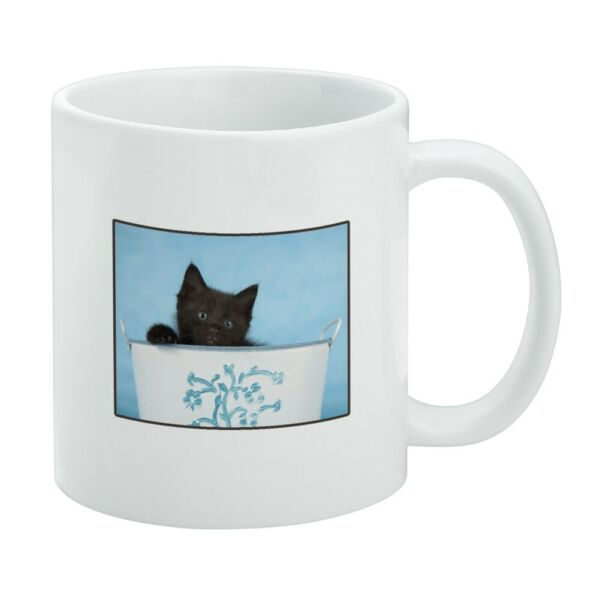Black Kitten Cat in Bucket Tin Pail White Mug