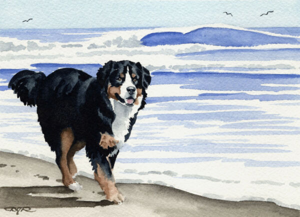 BERNESE MOUNTAIN DOG Painting 8 x 10 ART Print Signed by Artist DJR